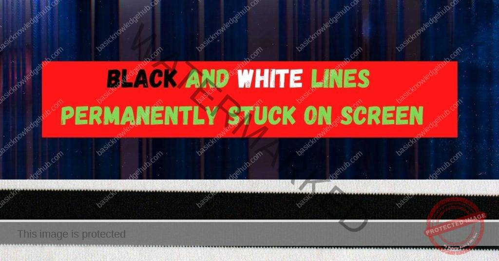 Black and white lines permanently stuck on screen