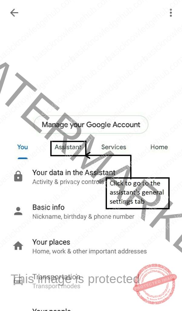 Google account management section, in that click on the Assistant option